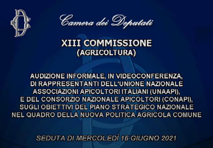 Audizione dei rappresentanti di Unaapi e Conapi alla Commissione Agricoltura della Camera
